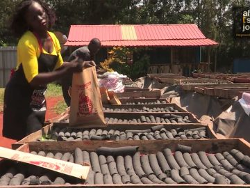 Cooking with Charcoal Pellets Green Energy