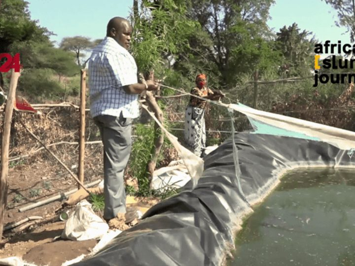 Promising Fish Farming Economic Projects in Isiolo, Kenya