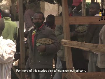 Somalia's Khat ban leaves Kenyan Farmers & Merchants in Despair